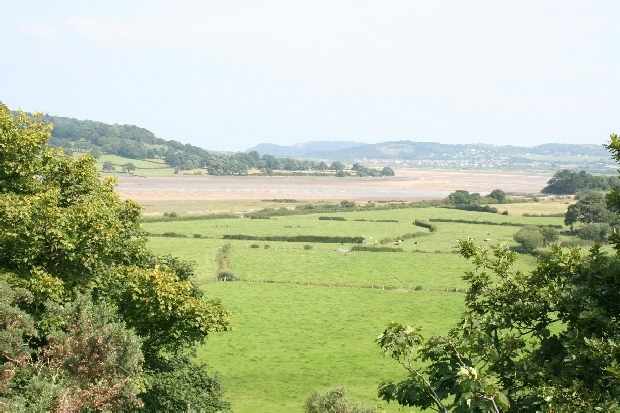 View of Estuary