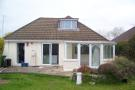 4 bed Detached Bungalow in Darbys Lane, Oakdale...