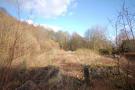 Land in Alva Development Site...