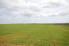 Farm Land for sale in 70.09 acres Arable Land...