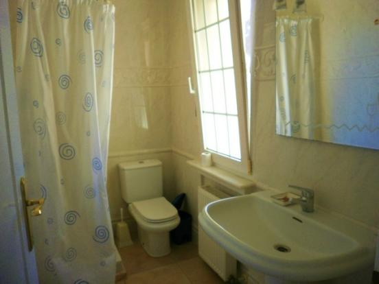 Guest shower 2