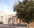The square again