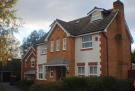 Detached property to rent in Pallingham Drive...