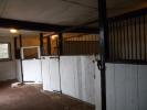 Land in Stabling & Grazing Nr to rent