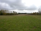 Land for sale in Halland Park Farm...
