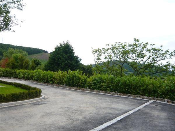 Driveway/views