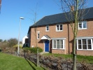 Detached property to rent in Fallows Road...