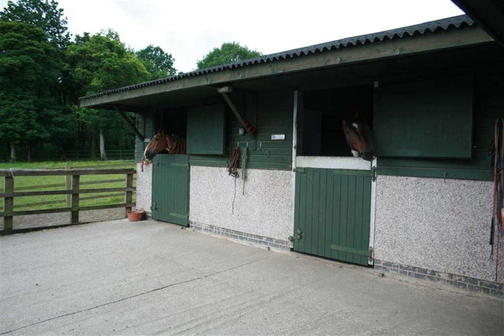 STABLE BLOCK & FEED