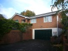 Detached Bungalow to rent in Yew Tree Close, Wimborne...