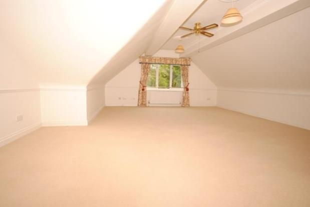 6 wood lounge 1.jpg