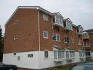 Flat to rent in Braithwaite Avenue...