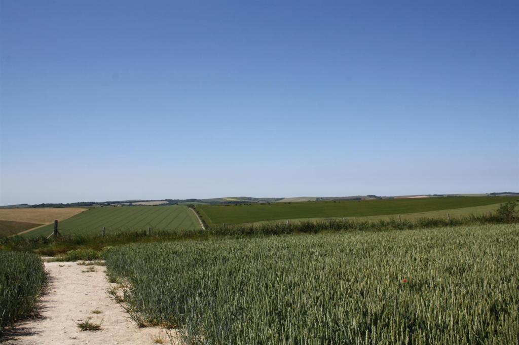 Farmland to the rear