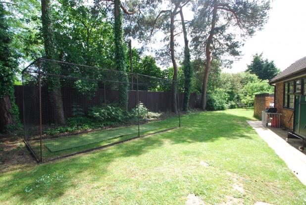 Side garden with cri