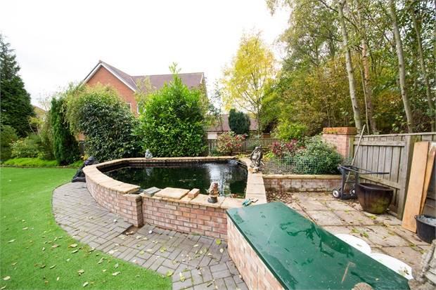 Garden/Pond
