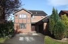 4 bedroom Detached house to rent in Bishopdale Rise...