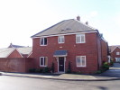 Detached house in Pine Tree Close...