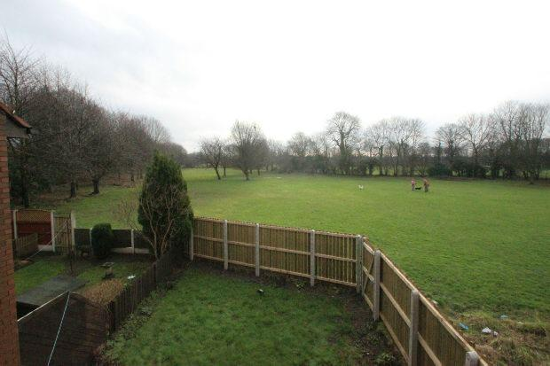 Views of Fields
