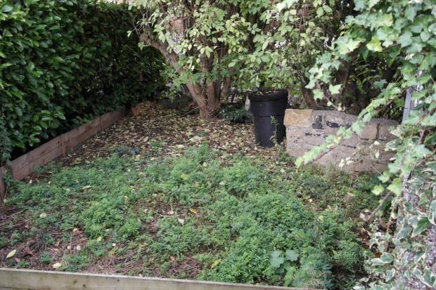 Rear Garden Continue