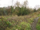 Land in Land Off Llewellyn for sale