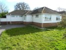 Detached Bungalow in Dalewood Avenue...