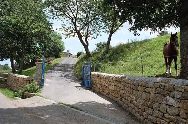 Blue gate entrance