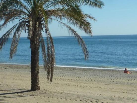 OVERLOOKS THE BEACH