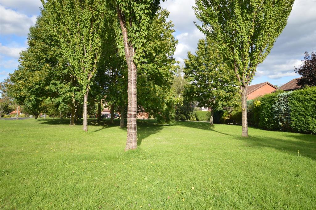 Communal Grounds to