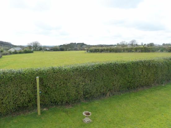 3 large fields