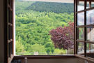 Views from windows