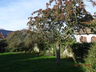 3 bed property in Normandy, Calvados...