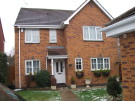 Photo of Hollyhock Way,
