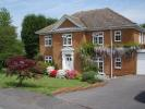 Detached property to rent in Langton Green...