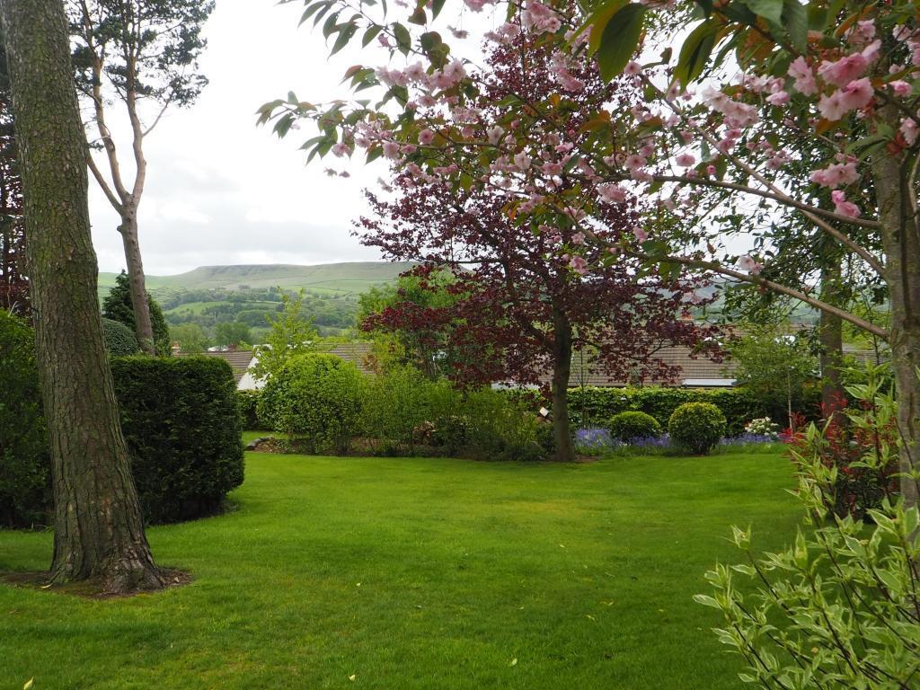 Views Over Combs Moss