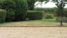 Gardens & Driveway