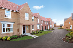 Elsea Park by David Wilson Homes, Greenacres Drive,