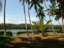 property for sale in puladikunnu, calicut