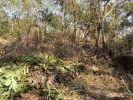 property for sale in Tivim, North Goa