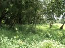 property for sale in Carmona, North Goa