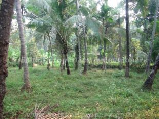 property for sale in Koomully, Calicut