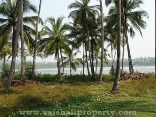 property for sale in Thiruvangoor, Calicut