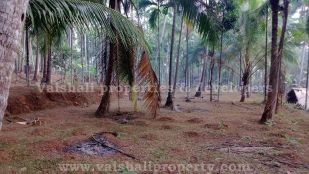 property for sale in Estate Mukku, Calicut