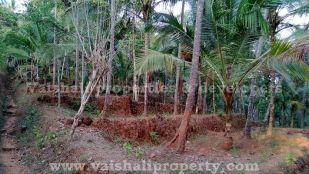 property for sale in Vakayad, Calicut