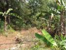 Land for sale in Land in Goa, India