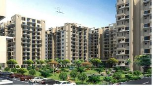 property for sale in Sector 9, Chandigarh