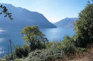 Lombardy Land for sale