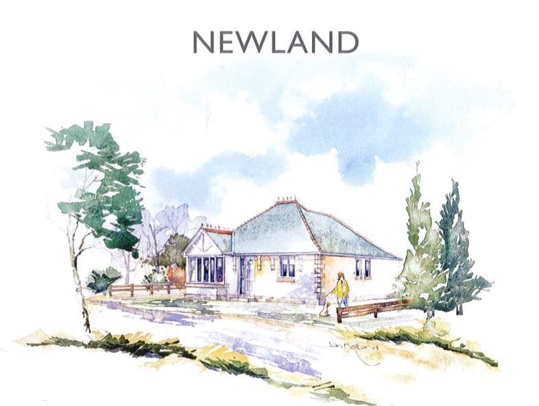 Newland image.png