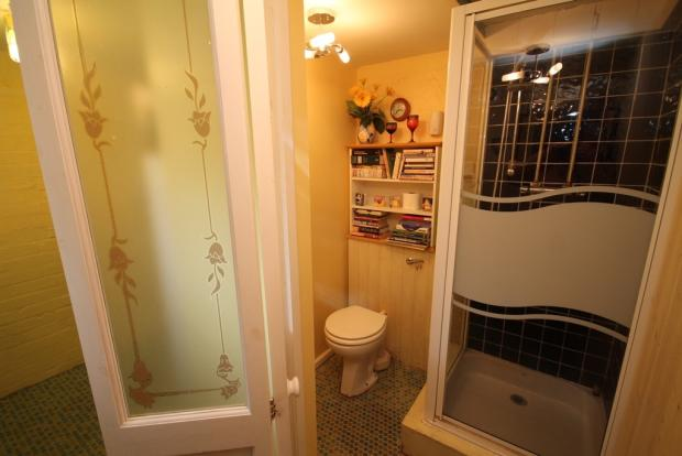Lower level shower