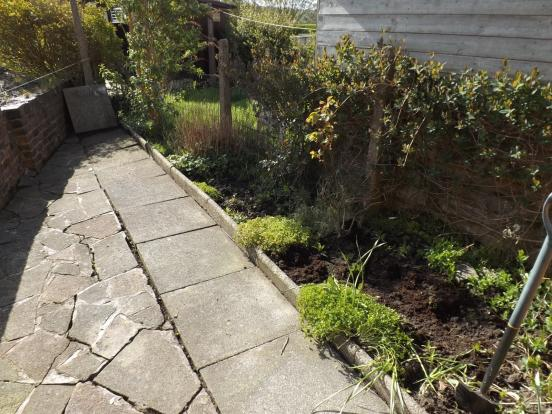 Garden/Courtyard 2