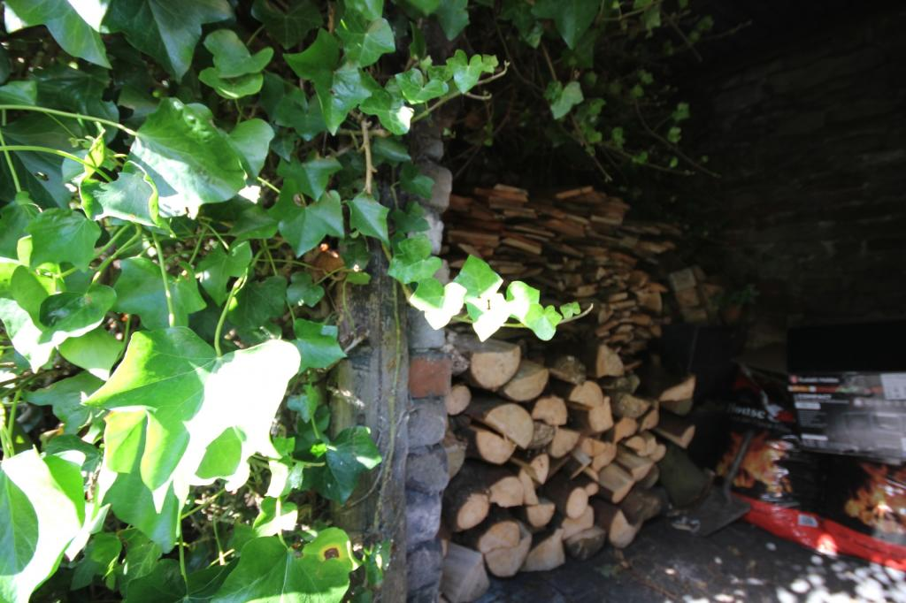firewood store