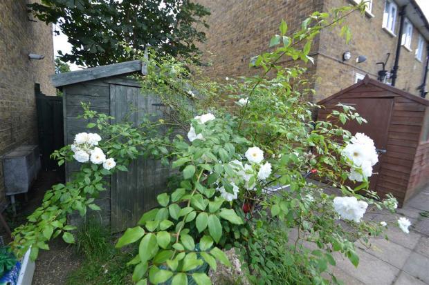 Garden +